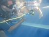Rosalies eerste duik ervaringen