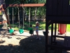 De speeltuin naast het zwembad