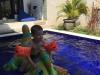 Hagedis in het zwembad