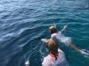 Snorkelen in het diepe