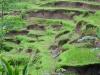 Mensgemaakt landschap