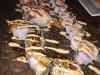 Lekkere sushi creaties